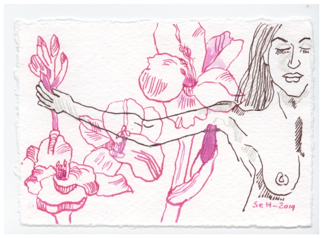 Gladiolen sind die Blume der Waage, 7 x 10 cm, Silberburg, Zeichnung von Susanne Haun (c) VG Bild-Kunst, Bonn 2019