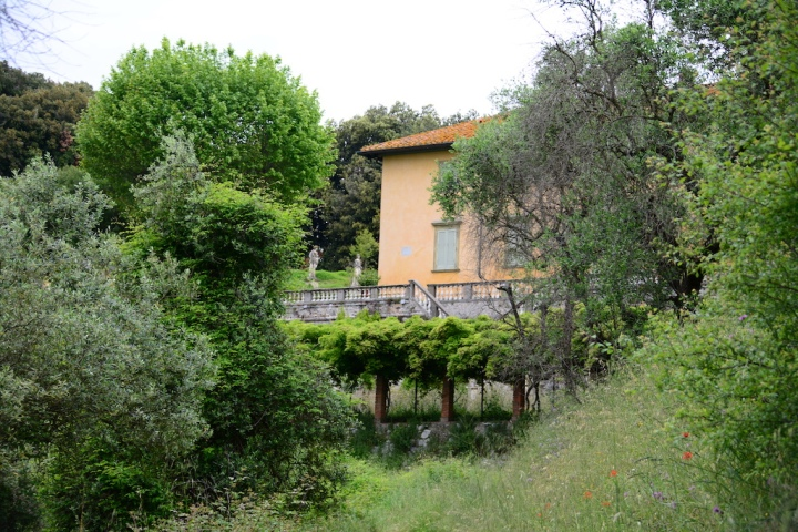 Impressionen von der Wanderung rund um Villa Baldini (c) Foto von M.Fanke