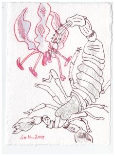 Gloriosa sind die Blume des Skorpions, 7 x 10 cm, Silberburg, Zeichnung von Susanne Haun (c) VG Bild-Kunst, Bonn 2019