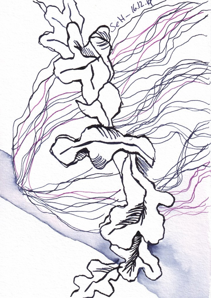 Inspiriert vom Zeughaus, 13 x 18 cm, Tusche auf Aquarellkarton, Zeichnung von Susanne Haun (c) VG Bild-Kunst, Bonn 2019
