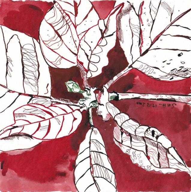 3 - Susanne Haun, Es leuchtet rot der Weihnachtsstern, 19.12.2010, 20 x 20 cm, Tusche auf Hahnemühle Aquarellkarton