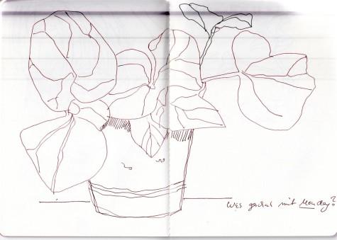 Aus dem Skizzenbuch von Susanne Haun, Sträucher und Blüten (c) VG Bild-Kunst, Bonn 2020