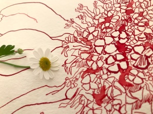 Geburtstagsblumenstrauß, 30 x 30 cm, Tusche auf Aquarellkarton, Zeichnung von Susanne Haun (c) VG Bild-Kunst, Bonn 2020