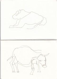 Kühe in der Prignitz, Zeichnung von Susanne Haun (c) VG Bild-Kunst, Bonn 2020