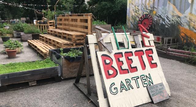 Interkultureller Garten Rote Beete im Centre Francais