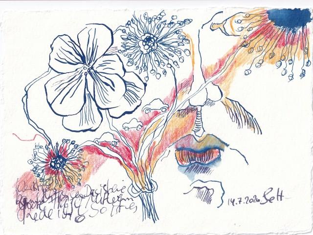 Tagebucheintrag 14.7.2020, Wer ist wahr, 20 x 15 cm, Tinte und Buntstift auf Silberburg Büttenpapier, Zeichnung von Susanne Haun (c) VG Bild-Kunst, Bonn 2020