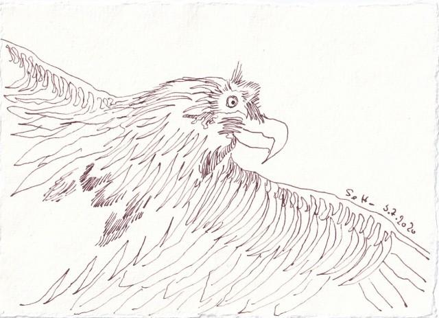 Tagebucheintrag 2.7.2020, Freier Flug - der Adler, 20 x 15 cm, Tinte und Buntstift auf Silberburg Büttenpapier, Zeichnung von Susanne Haun (c) VG Bild-Kunst, Bonn 2020