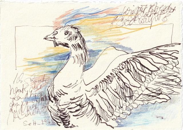Tagebucheintrag 29.7.2020, Ich schaute die Landtiere, 20 x 15 cm, Tinte und Buntstift auf Silberburg Büttenpapier, Zeichnung von Susanne Haun (c) VG Bild-Kunst, Bonn 2020