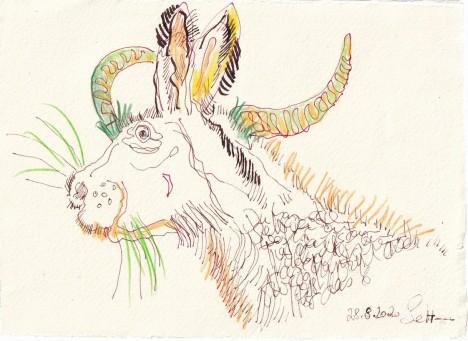 Tagebucheintrag 28.08.2020, Was für ein Tier haben wir denn hier, 20 x 15 cm, Tinte und Buntstift auf Silberburg Büttenpapier, Zeichnung von Susanne Haun (c) VG Bild-Kunst, Bonn 2020